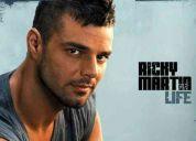 Ricky martin en river plate 16 de septiembre desde la plata