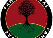 Familia reggae convoca guitarrista para proyecto de reggae roots. equipado. zona sur