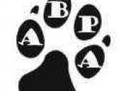 A.b.p.a. asociación bahiense de protección animal.