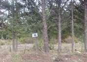 Vendo terreno en pleno centro de epuyen