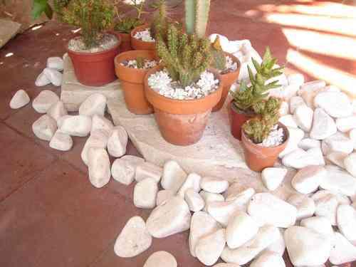 Piedras decorativas para jardin vicente l pez doplim for Precio piedras jardin