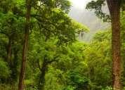 Venta / permuta campo 7100 hectareas salta / iruya urg x viaje
