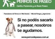Paseador de perros en villa del parque