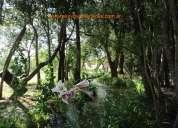 Complejo turistico en nogolí, 1 hectarea