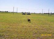 Vendo terreno en tierra de sueÑos i  740 m2