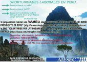 Maestro/profesor en colegio y voluntario de ong en perú