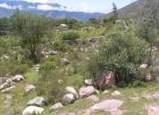 Vendo terreno el mollar - tafi del valle (excelente vista)