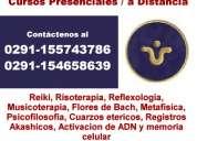 Curso de reflexologia rosario